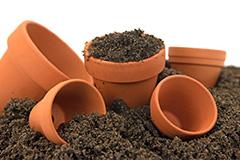 怎样判断盆土已经变干了?