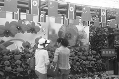 2014中朝花卉展举办5天今日闭幕
