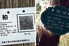 花木换证二维码替代传统牌