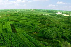 """中国花卉报社组织开展的""""2008年度全国十佳苗圃""""已评出"""
