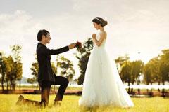 求婚花语大全集 向心爱的人表达自己的爱意吧