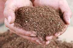 椰砖和营养土的区别,以及椰砖的使用方法及注意事项