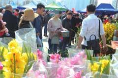 """兰州花卉展销会:花卉市场受热捧 养花更是""""养心情"""""""