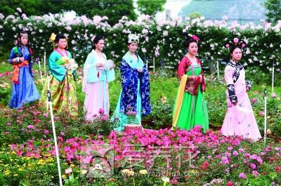 花卉旅游图片