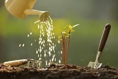 [从零开始学养花]如何判断植物缺水?什么叫见干见湿?三分钟学会浇花方法