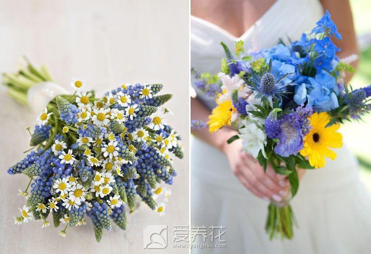 送花的忌讳图片
